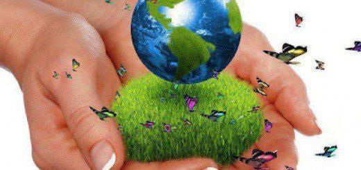 Re-Educando el Ambiente Habitos