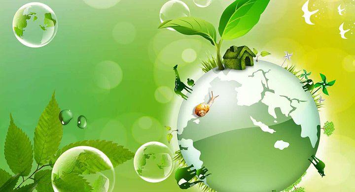 Re-Educando el Ambiente