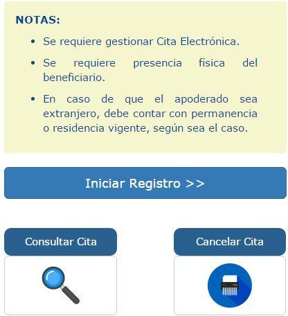 pasaporte electronico peruano