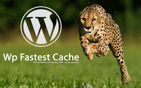 plugin wp fastest cache