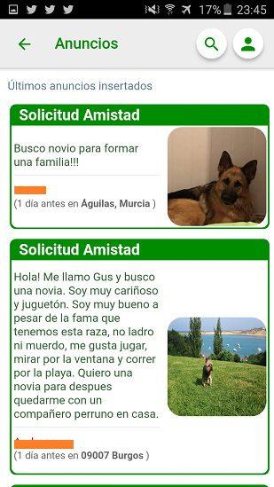 Anuncios - Eventos Social Animals App - Social Animals - www.socialanimals.es