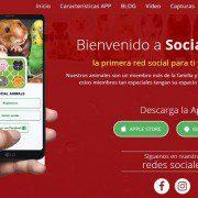 Social Animals App